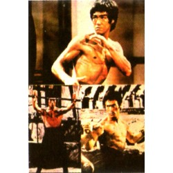 Poster arte marțiale H-212 - Bruce Lee
