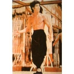 Poster arte marțiale H-215 Bruce Lee