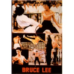 Poster arte marțiale H-216 - Bruce Lee