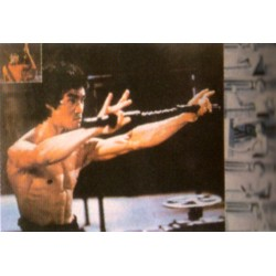 Poster arte marțiale H-217 - Bruce Lee