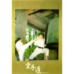 """Poster arte marțiale H-222 - Karatedo """"Templu"""""""