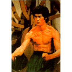 Poster arte marțiale H-229 - Bruce Lee