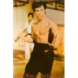 Poster arte marțiale H-230 - Bruce Lee
