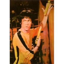 Poster arte marțiale H-231 - Bruce Lee