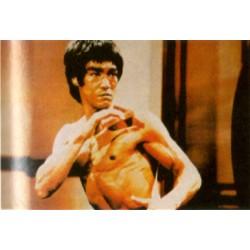 Poster arte marțiale H-232 - Bruce Lee